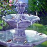 benicia fountain